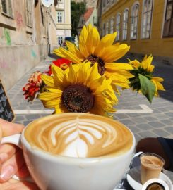 Nola coffeeshop